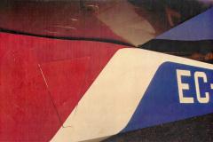 T45-Swallow-0080