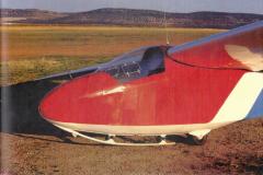 T45-Swallow-0081
