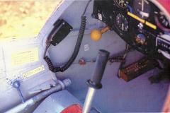T45-Swallow-0082