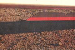 T45-Swallow-0086