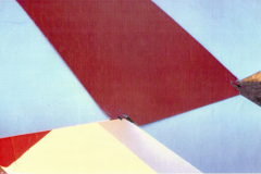 T45-Swallow-0093