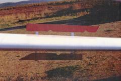 T45-Swallow-0095