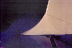 T45-Swallow-0099